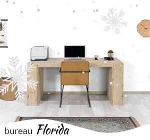 Steigerhouten bureau Florida