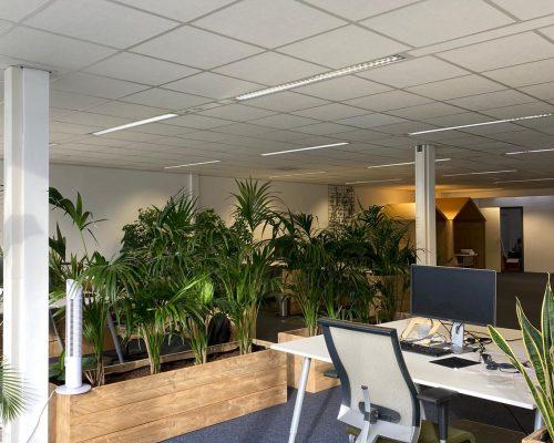 Steigerhouten plantenbakken room divider in kantoor